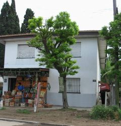 http://www.fernandoalo.com.ar/i/frente.jpg